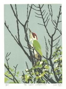 Angus-Max-The-Green-Woodpecker.jpg