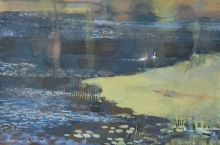 Clucas-Fiona-Mute-Swans-White-Loch-2.jpg