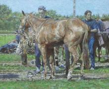Syrett-Dennis-Polo-Ponies.jpg