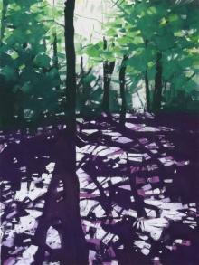 Summerfield-Janette-Through-the-Shadows.jpg