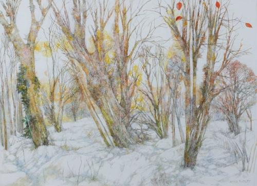 Neill_Anna-Dudley_Winter-Trees-Surrey.jpg