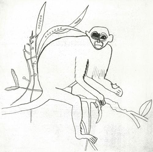 Haslam-Jack-Squirrel-Monkey.jpg