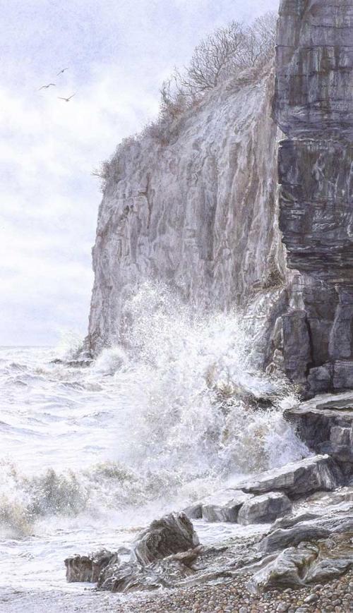 Flutter-Felicity-Cliff-End.jpg