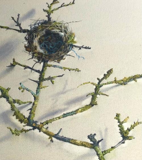 August-Lillias-Winters-Nest-29-x-26-cm.jpg