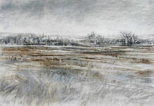 Baldwin-Janine-Scarred-Field.jpg