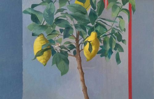 Bays-Caroline-Lemon-Tree-With-Red-Stripe.jpg