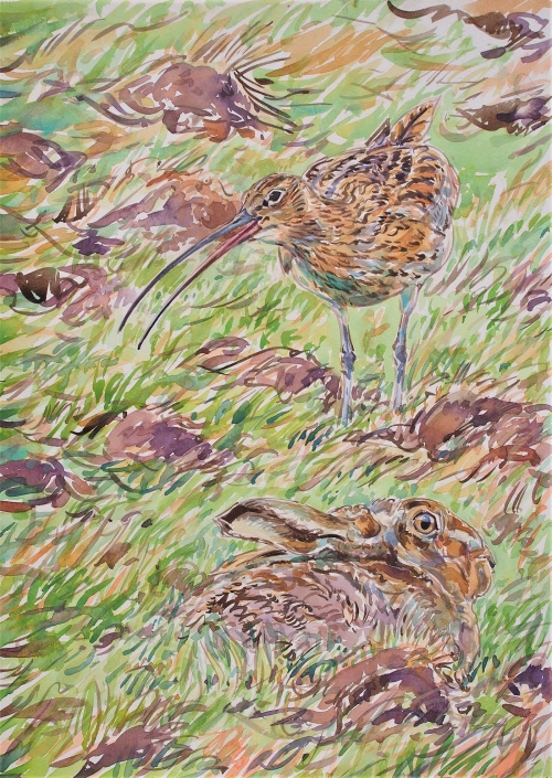 Bennett-David-Calling-Curlew-And-Hare.jpg