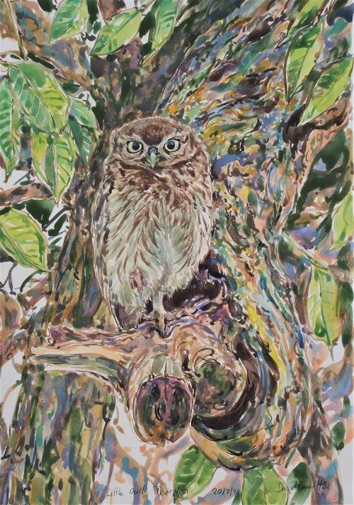 Bennett-David-Little-Owlet-In-Walnut-Tree.jpg