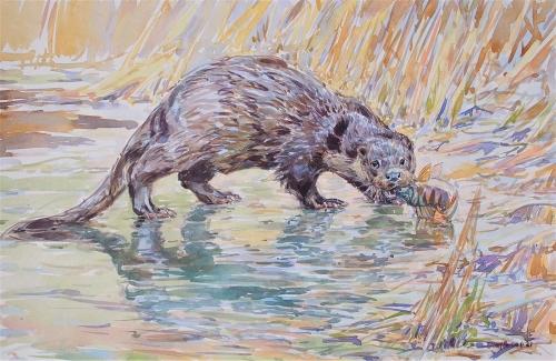 Bennett-David-Otter-And-Perch.jpg