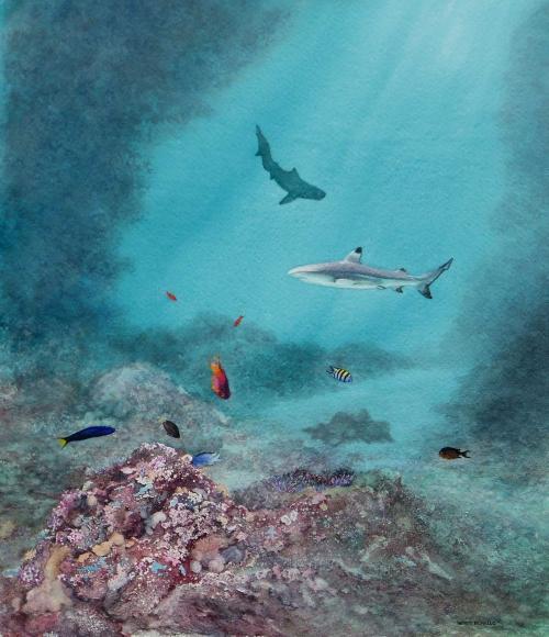 Borello-Wendy-Ocean-Life.jpg