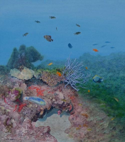 Borello-Wendy-Underwater-Madagascar.jpg