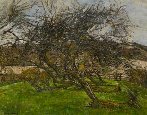 Bowey-Olwyn-Fallen-Tree.jpg