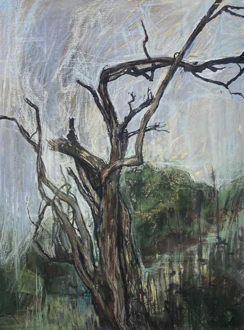 Bowyer-Jason-Tree-at-Cwmbach.jpg