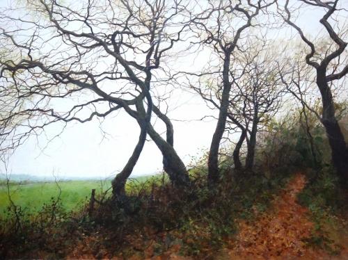 Brammeld-David-Cold-Autumn-Walk-on-the-Downs.jpg