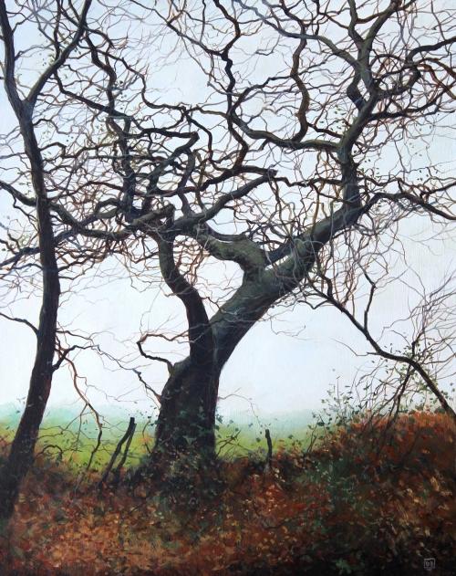 Brammeld-David-Heart-of-the-Tree.jpg