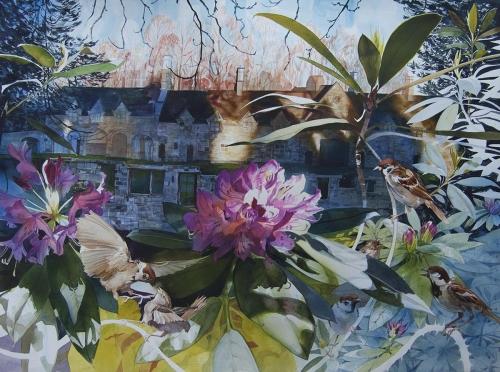 Bray-Julian-Sparrows-Squabble-At-Annesley-Hall-NG150AS.jpg