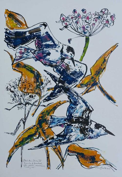 Brodde-Marco-Black-Tern-Series-IV.jpg