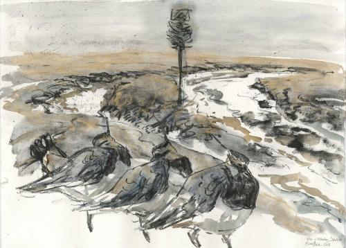 Brodde-Marco-Lapwings-and-Winter-Marsh.jpg