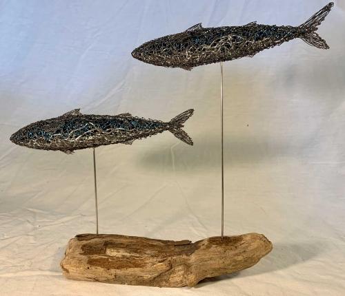 Brown-Rosie-Two-Atlantic-mackerel.jpg