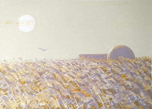 Buckle-Clare-Minsmere-Sun-.jpg