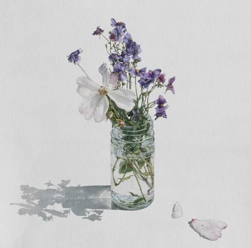 Bush-Emma-A-Wild-Rose-and-Bunny-Rabbit-Flower-Shadows.jpg