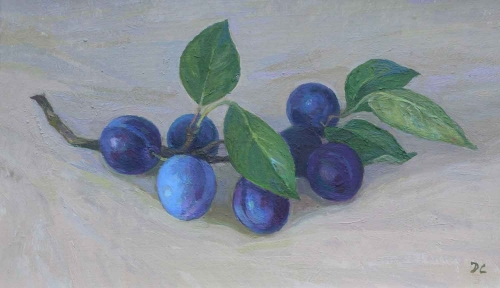 Calvert-Diana-Small-Blue-Plums.jpg