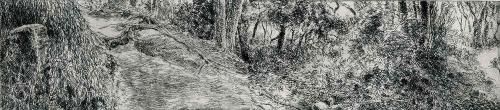 Cole-Austin-Kamakurra-Trail-4.jpg