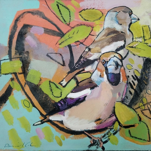 Cole-Daniel-Hawfinches.jpg