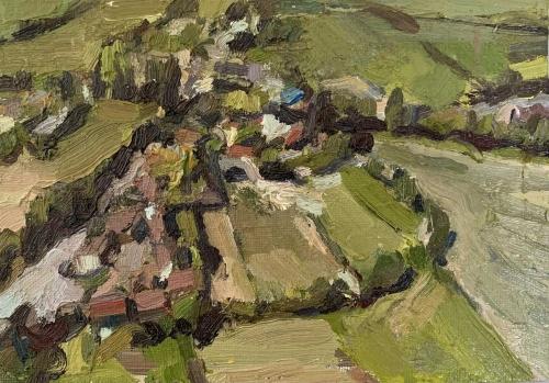 Coleman-Amanda-Drone-View-Landscape.jpg