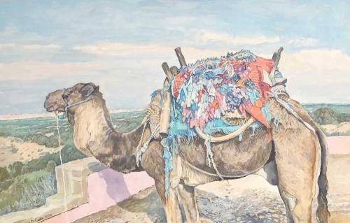 Cook-Richard-Resting-Camel---Essaouira.jpg