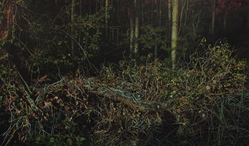 Corkrey-Michael-Fallen-III.jpg