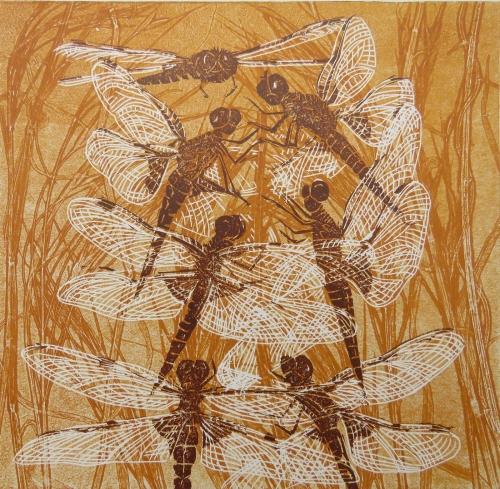 Curtis-Jackie-Dragonflies-.jpg