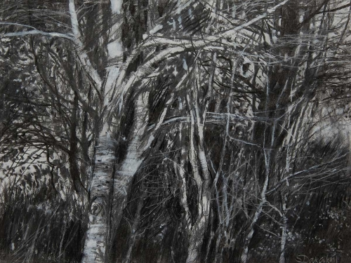 Dakakni-Susan-Trees-in-a-Thicket-I.jpg