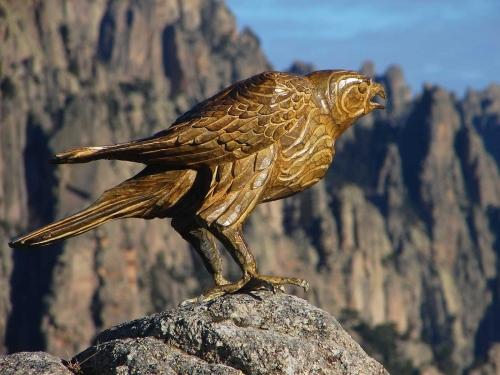 Deguilhen-Stephane-The-Hawk.jpg