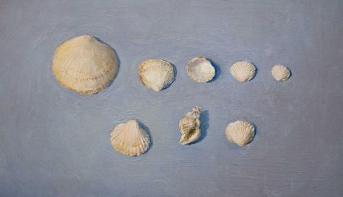 Dennis-Anna-Study-Of-Shells.jpg