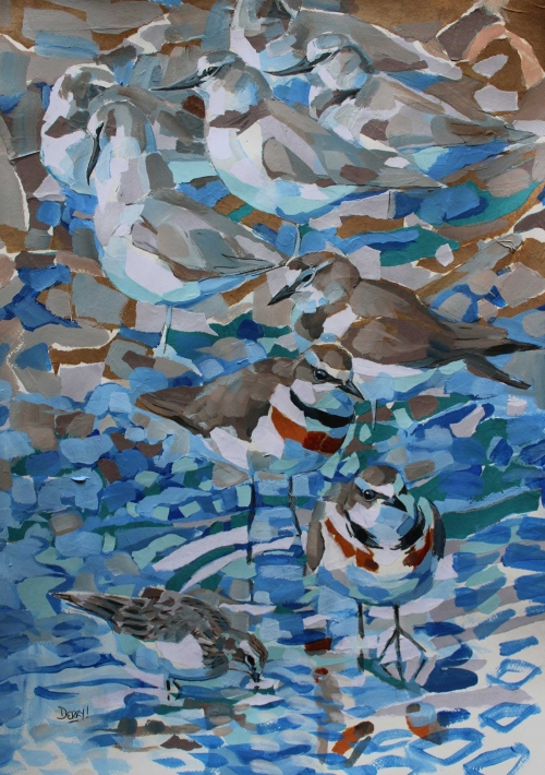 Derry-Nick-Wrybills-Banded-Dotterels-and-Red-necked-Stintcollage-and-acrylic.jpg