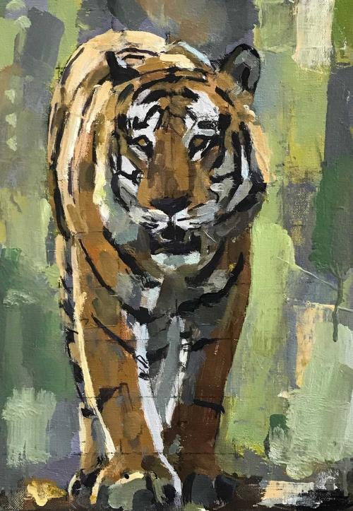 Dobbs-John-Bengal-Tiger.jpg