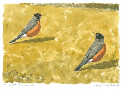 Dusen-Barry-van-Worm-Hunters-Am-Robins.jpg