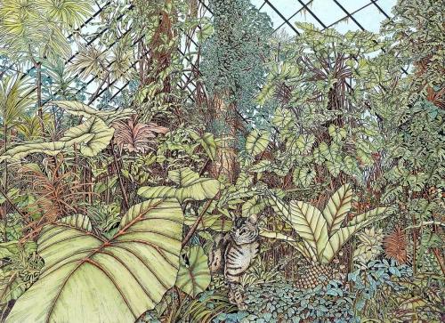 Dutton-Meg-Conservatory-Cat.jpg