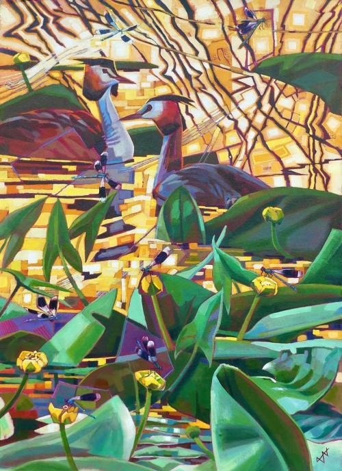 Edwards-Brin-Great-Crested-Grebes-with-Yellow-Water-Lilies-and-Banded-Demoiselles.jpg