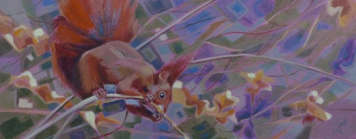 Edwards-Brin-Red-Squirrel.jpg