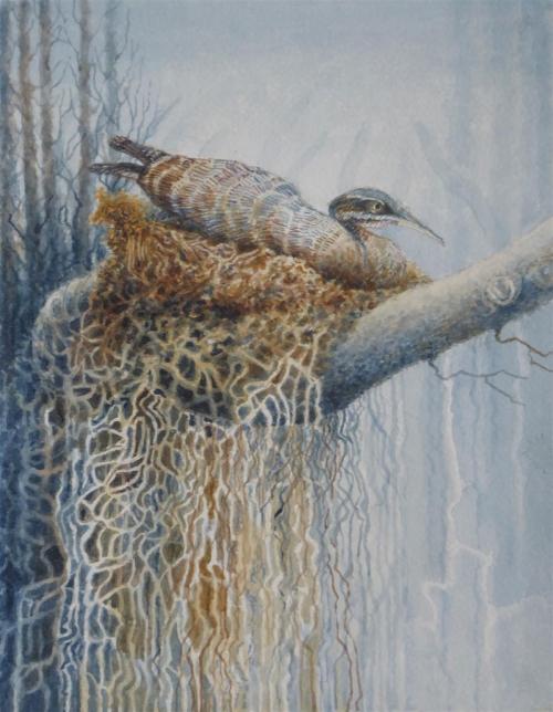 Fazakerley-Pauline-Nesting.jpg