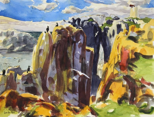 Feu-du-Leo-Seabird-cliffs-Isle-of-May.jpg