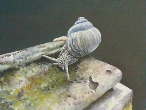 Finch-Jenny-Snail.jpg