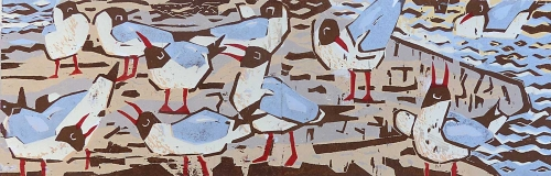Foker-John-Black-headed-gulls--Elmley-Marshes.jpg