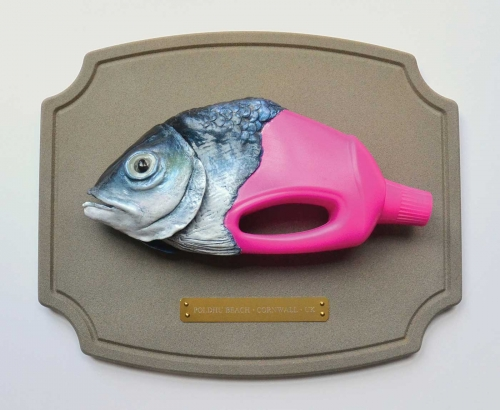 Foo-Colin-Save-Our-Seas-Fish.jpg