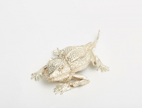 Frew-Hilary-Chameleon.jpg