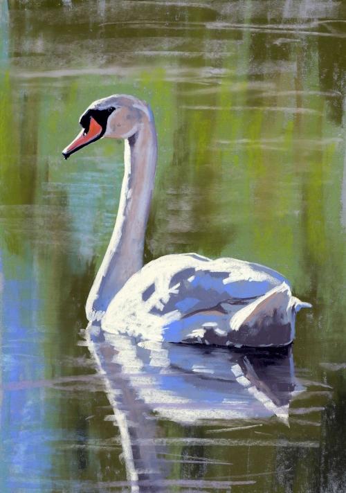 Garlick-Jo-Swan-2.jpg
