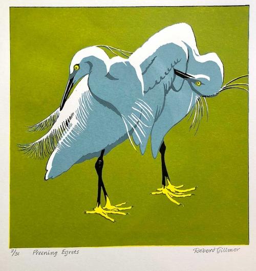 Gillmor-Robert-Preening-Egrets.jpg