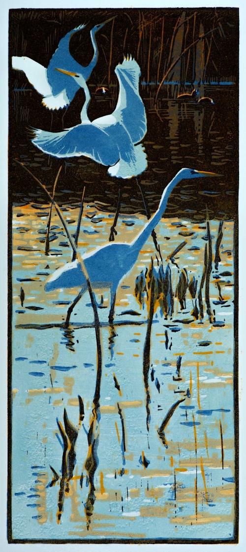Greenhalf-Robert-Great-White-Egrets.jpg